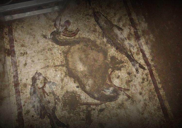 Tarsus'taki Kaçak Kazıda Mozaik ve Lahit Bulundu