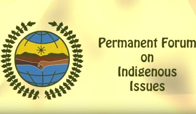 Protecting the rights and well-being of indigenous peoples