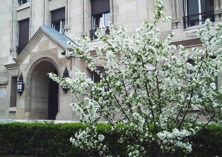 La Maison des étudiants arméniens à Paris