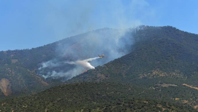 Dersim'de bir ilk: Orman yangınına uçakla müdahale ediliyor