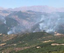 Dersim'de orman yangını devam ediyor