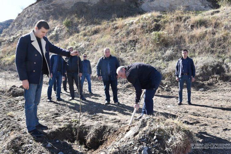 Бако Саакян участвовал в посадке деревьев в Бердзоре к 100 летию ЕГУ