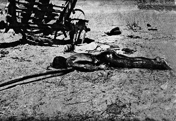 Armenian Woman With Her Child Tortured To Death