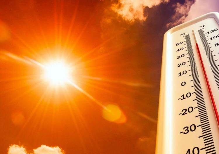 Аномальная жара в Европе обновляет рекорды