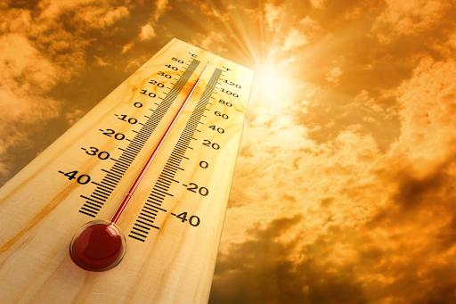 Июль 2019 года стал самым жарким месяцем в истории метеонаблюдений