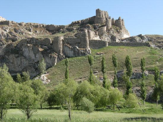 Первая синтетическая краска в Армянском нагорье была использована в царстве Ван