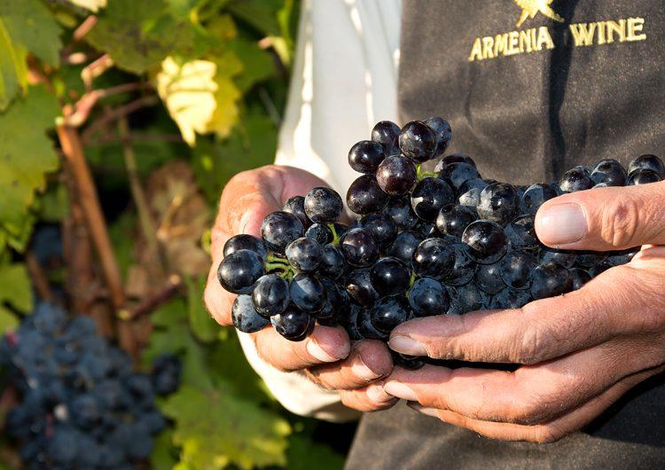 Коньяк Armenia Wine — в числе лучших на международном конкурсе