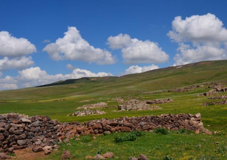 Երեք հազարամեայ հնութեամբ ցորենի հատիկներ Արեւմտեան Հայաստանի Բիւրակնի շրջանին
