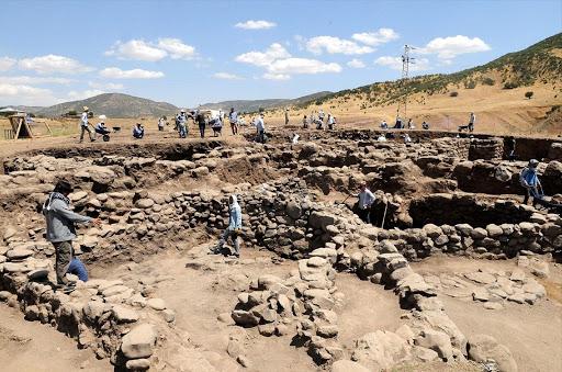 Зернам пшеницы, найденным в Бюракне, 4500 лет