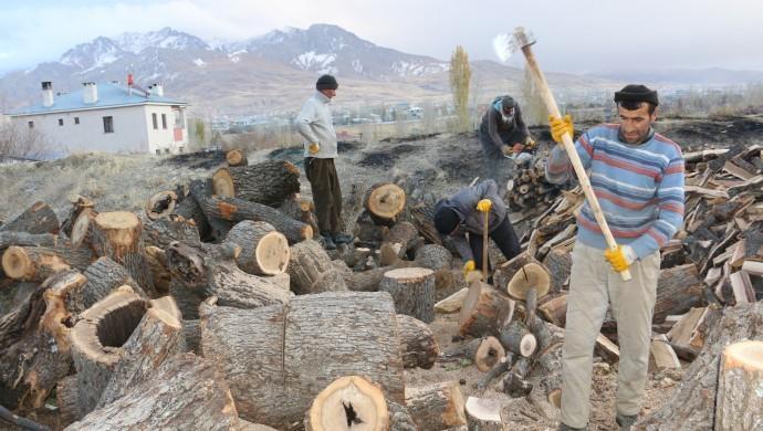 Batı Ermenistan'ın Van şehrinde üç kardeş 50 lira karşılığında yaz-kış demeden odun kırıyor