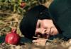 Բազմաթիվ մրցանակների արժանացած  կարճամետրաժ կինոնկար ՝՝Նռան ժամանակը՝՝