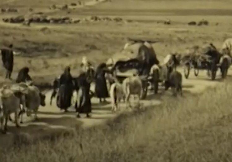 """Թուրք գրողը պատմում է Հայերի ցեղասպանությունից փրկված ծպտյալ հայերի մասին. """"Ամերիկայի Ձայն""""-ի արխիվից"""