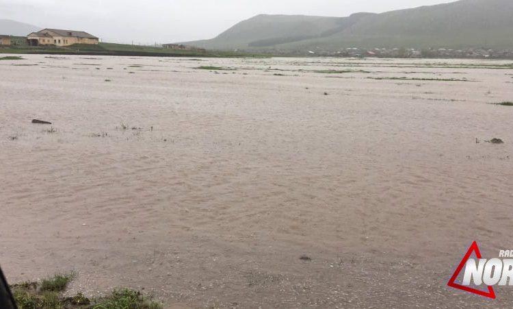 Cavakhk'ın Ninotsminda köyünde şiddetli yağmurlar tarlaları ve çayırları sular altında bıraktı