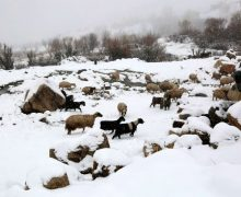 Snowfall in Western Armenia