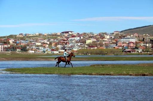 Batı Ermenistan'daki Ardahan'da Kura Nehri taştı, Ardahan Ovası göle döndü