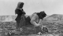 Czech Senate Adopts Resolution Condemning the  Genocide of Armenians