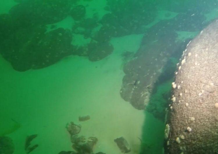 Dalgıçlar Sevan Gölü'ndeki insan kemikleri ile batan teknenin  kalıntılarını karaya çıkardı
