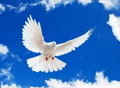 Bugün Uluslararası Barış Günü