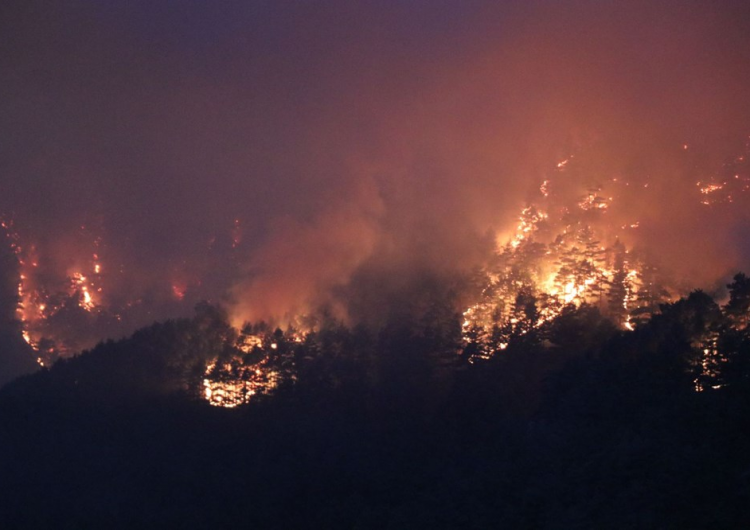 Forest fires in Adana