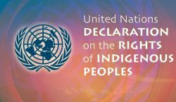 2007 թվականի սեպտեմբերի 13-ին Միավորաված Ազգերի կազմակերպությունը ընդունեց ԲՆԻԿ ԺՈՂՈՎՈՒՐԴՆԵՐԻ ՀՌՉԱԿԱԳԻՐԸ