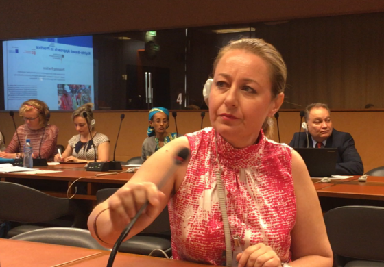 (English) UN Geneva - 10th session of the Expert Mechanism of Indigenous Peoples.  WIPO -Indigenous Peoples Commission  Statement of Lydia Margossian from The Assembly of Armenians of Western Armenia. July 2017.